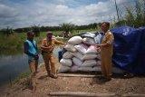 Mesuji usul pembangunan irigasi untuk lahan seluas 25 ribu hektare