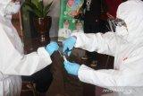 Jauh dari target, Kabupaten Bogor baru lakukan 14.841 tes PCR