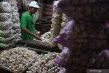 Peneliti ingatkan perlu pengusutan soal lamanya izin impor bawang putih