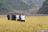 Kim Jong Un kerahkan militer atasi banjir Korea Utara