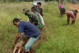 Prajurit TNI bantu warga di perbatasan Kampung Kireli bersihkan jalan