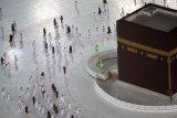 Masjidil Haram sambut kelompok jamaah umrah pertama di tengah wabah COVID-19