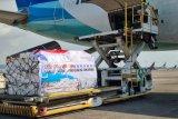 Gubernur Sulsel : Rute baru Maskapai Garuda perluas peluang ekspor