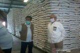 Pengadaan beras stoknas  di Sulteng capai 13.763 ton