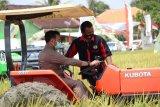 Mentan: Lampung butuh klaster sektor pertanian