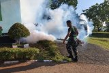 Pendam XVII/Cenderawasih lakukan fogging lingkungan kerja cegah malaria dan DBD