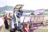 Pemkab Minahasa dorong peningkatan produksi padi petani