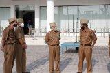Pj Bupati Pesisir Barat monitoring kinerja dan pelayanan OPD