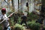 Ini penyebab syuting 'Jurassic World: Dominion' dihentikan