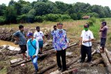 Jaringan irigasi di tiga kecamatan diperbaiki  secara swakelola