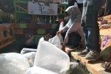 Pemkot Mataram sulap saluran air jadi tempat wisata ikan koi