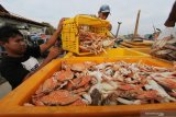 Presiden Jokowi: UU Cipta Kerja berikan kehidupan pekerja yang baik