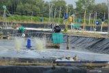 KKP ajak warga manfaatkan  lahan kosong untuk usaha perikanan