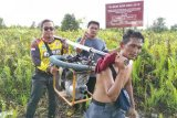Relawan  rutin basahi lahan gambut cegah kebakaran