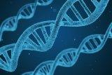 Kenali Galaktosemia tipe 1, salah satu penyakit langka ditemukan di Indonesia
