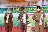Gubernur: Sektor pertanian harus berdampak pada kesejahteraan petani