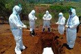 Jubir STPP: 123 warga di Papua meninggal akibat terpapar COVID-19