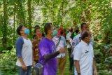 BBKSDA Sumut izinkan buka lagi Taman Wisata Alam Sibolangit di Deli Serdang