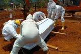 Jubir Ni Nyoman: Total 67 warga Kota Jayapura meninggal akibat COVID-19