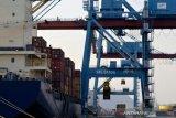 Neraca perdagangan Lampung surplus