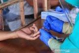 120 pasien COVID-19 di Palangka Raya masih jalani perawatan