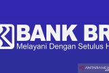 Bank Rakyat Indonesia Cabang  Baturaja luncurkan web pasar BRI