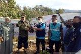 Peduli lingkungan, PLN salurkan bantuan 500 bibit pohon di Jeneponto
