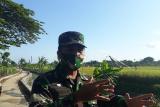 Kapendam Udayana : TMMD bantu sektor ekonomi di Desa Kertalangu