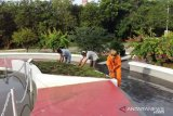 Pemkot Kupang merasa risau  banyak tanaman hias di taman kota hilang