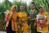 Selama pandemi penjualan Batik Leni di Medan turun drastis