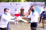 PT CPI bantu 20 kelompok tani Riau tingkatkan ketahanan pangan saat pandemi