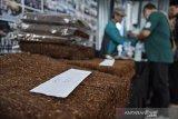 Kajian ilmiah perlu sebagai dasar untuk regulasi produk tembakau alternatif
