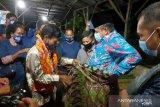 Dongkrak kesejahteraan petani, Alfedri canangkan Tualang jadi sentra Jambu Biji