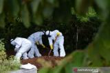 Kasus positif COVID-19 di Sulawesi Tenggara bertambah 72 dan satu meninggal