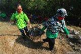 Warga mengangkut sampah plastik yang berserakan di pesisir Tambak Wedi, Surabaya, Jawa Timur, Minggu (25/10/2020). Kegiatan yang dilakukan  oleh Tunas Hijau bersama sejumlah pelajar, guru dan keluarganya itu wujud kepedulian terhadap kebersihan lingkungan di kawasan pantai. Antara Jatim/Didik/Zk