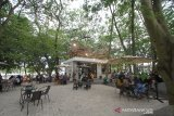 Suasana cafe 101 Coffee di hutan kota di Jalan Lambung Mangkurat, Banjarmasin, Kalimantan Selatan, Minggu (25/10/2020). Cafe yang berkonsep di tengah hutan kota dan dikelola Korem 101/Antasari berkerjasama dengan pihak swasta tersebut ramai dikunjungi warga yang ingin bersantai. Foto Antaranews Kalsel/Bayu Pratama S.