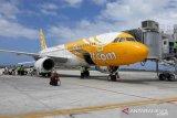 AP I surati Pemkab Kulon Progo terkait larangan menerbangan layang-layang