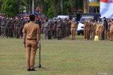 Palangka Raya diminta usut tuntas kasus ASN terlibat pilkada