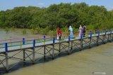 Pengunjung menikmati wisata hutan mangrove di Pantai Desa Lembung, Pamekasan, Jawa Timur, Kamis (29/10/2020). Ekowisata dengan jenis mangrove terlengkap di Madura itu, selalu ramai pengunjung terutama saat libur akhir pekan dan libur nasional. Antara Jatim/Saiful Bahri/zk