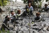 Warga menanam bibit tanaman Mangrove di pantai di kawasan Greges, Surabaya, Jawa Timur, Sabtu (31/10/2020). Kegiatan bersih-bersih sampah plastik serta menanam bibit tanaman Mangrove yang dilakukan Jaga Segara bersama sejumlah mahasiswa dan warga setempat tersebut wujud kepedulian terhadap lingkungan di kawasan pantai. Antara Jatim/Didik/Zk