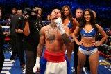 Petinju Davis KO Santa Cruz untuk rebut sabuk juara ringan super WBA
