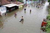 Walhi Sumsel: Banjir di Muara Enim dampak  eksploitasi SDA
