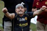 Kurangi efek putus obat, Maradona dibius dokter pribadinya