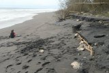 Dispar Kulon Progo diminta jaga kebersihan kawasan pantai