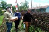 Dinas PUPR cek pembangunan jembatan  Tumpung Laung-Sikan