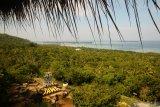Pelestarian keanekaragaman hayati, Karimunjawa Jepara ditetapkan sebagai cagar biosfer oleh UNESCO