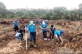 Generasi muda Lamandau didorong menjadi petani handal
