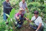 KPI Ogan Komering Ulu dorong  masyarakat gemar tanam pohon