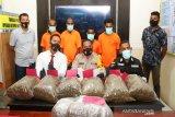 Bawa 10 kg ganja ke Jayapura, empat WN PNG ditangkap
