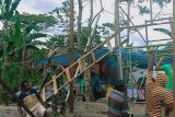 Babinsa Koramil Timika bantu perbaiki rumah warga kampung Hangaitji